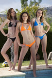 Trois filles de bikini Photos libres de droits