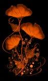 Trois fleurs du feu Photographie stock