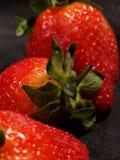 Trois fraises Images libres de droits