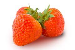 Trois fraises d'isolement Images libres de droits