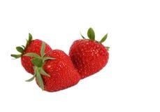 Trois fraises d'isolement Image libre de droits
