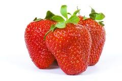 Trois fraises d'isolement sur le blanc Images libres de droits