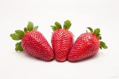 Trois fraises de fruits Photo stock