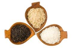 Trois genres de riz Images libres de droits