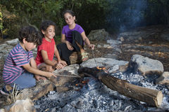Trois gosses dans un feu de camp Images libres de droits