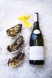 Trois grandes belles huîtres se trouvent près d'une bouteille de vin sur la glace Photo stock