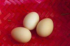Trois grands oeufs de poulet Image libre de droits