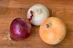 Trois grands oignons Photo stock
