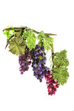 Trois groupes de raisins faits main de laine felted Photo libre de droits