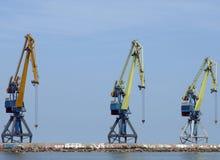 Trois grues de dock. photo libre de droits