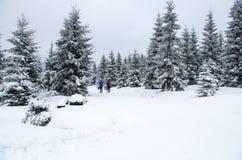 Trois hommes dans la distance faisant le ski de fond, Jizerka, République Tchèque Photographie stock