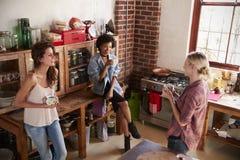 Trois jeunes amies adultes parlent dans la cuisine, vue élevée Photographie stock libre de droits
