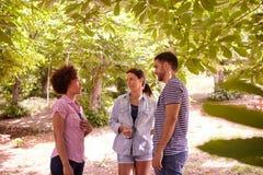 Trois jeunes amis ayant une discussion Photos stock