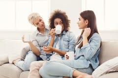 Trois jeunes amis féminins avec du café causant à la maison Photo stock