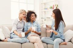 Trois jeunes amis féminins avec du café causant à la maison Images stock