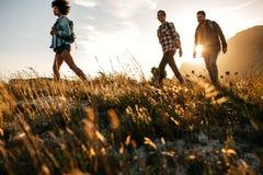 Trois jeunes amis sur une promenade de pays Image libre de droits