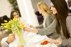 Trois jeunes femmes grillant avec du vin Photographie stock