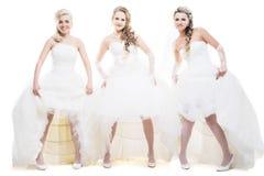 Trois jeunes mariées d'isolement sur le blanc Image stock