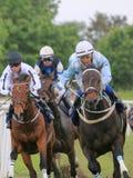 Trois jockeys sur des chevaux de course Photographie stock