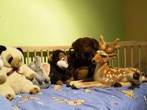 Trois jouets Photographie stock