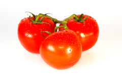 Trois juste tomates lavées fraîches de vigne Photos libres de droits