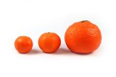 Trois mandarines d'isolement Photos libres de droits