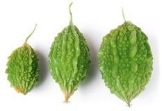 Trois melon ou momordica amer vert d'isolement sur le fond blanc Photos libres de droits
