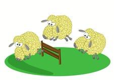 Trois moutons sautant par-dessus une barrière Photographie stock libre de droits