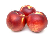 Trois nectarines Photo stock