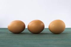 Trois oeufs bruns de poulet Photos stock