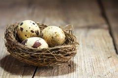 Trois oeufs de caille dans un nid sur un fond en bois de vintage rustique Photographie stock libre de droits