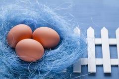 Trois oeufs de pâques dans le nid et la barrière blanche Image libre de droits