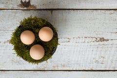 Trois oeufs de pâques dans un panier de mousse, concept heureux de Pâques, rétro fond de Pâques Photos stock