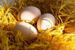 Trois oeufs de poulet dans le nid décoratif le concept de la nutrition naturelle, agriculture photos stock
