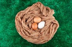 Trois oeufs de poulet dans le nid fait de tissu renvoient sur le fond vert Photos stock
