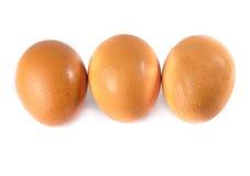 Trois oeufs sont isolés sur un fond blanc Image libre de droits