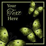 Trois papillons verts sur le fond Image stock