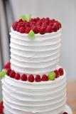 Trois parts de gâteau de mariage nu avec des framboises Photos libres de droits