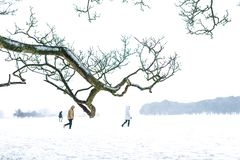 Trois personnes marchant sur la neige photo stock