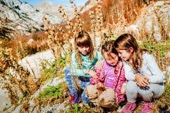 Trois petites amies trimardant et sélectionnant fleurit Durmitor, MOIS Images stock