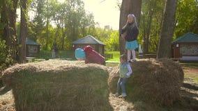Trois petites filles actives jouant dans le foin et les meules de foin ensemble banque de vidéos