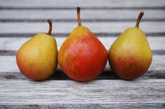 Trois petites poires dans une rangée Photo libre de droits