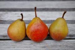 Trois petites poires de Seckel dans une rangée Photos libres de droits