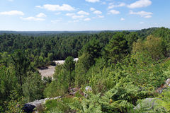 Trois pignons valley in Fontainebleau forest Royalty Free Stock Photography