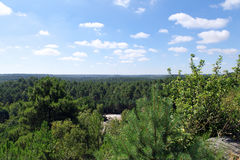 Trois pignons valley in Fontainebleau forest Royalty Free Stock Image