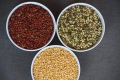 Trois pleines graines de couleur Image stock