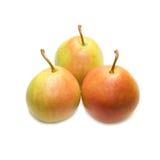 Trois poires. Photographie stock libre de droits