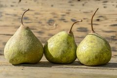 Trois poires dans la rangée images libres de droits