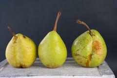 Trois poires repérées d'automne Image stock