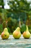 Trois poires vertes avec des feuilles sur le brun vert en bois ont vieilli la fin de fond de texture  Poires sur le fond brouillé Photos stock
